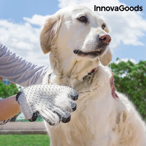 Ръкавица за Сресване и Масажиране на Домашни Любимци InnovaGoods